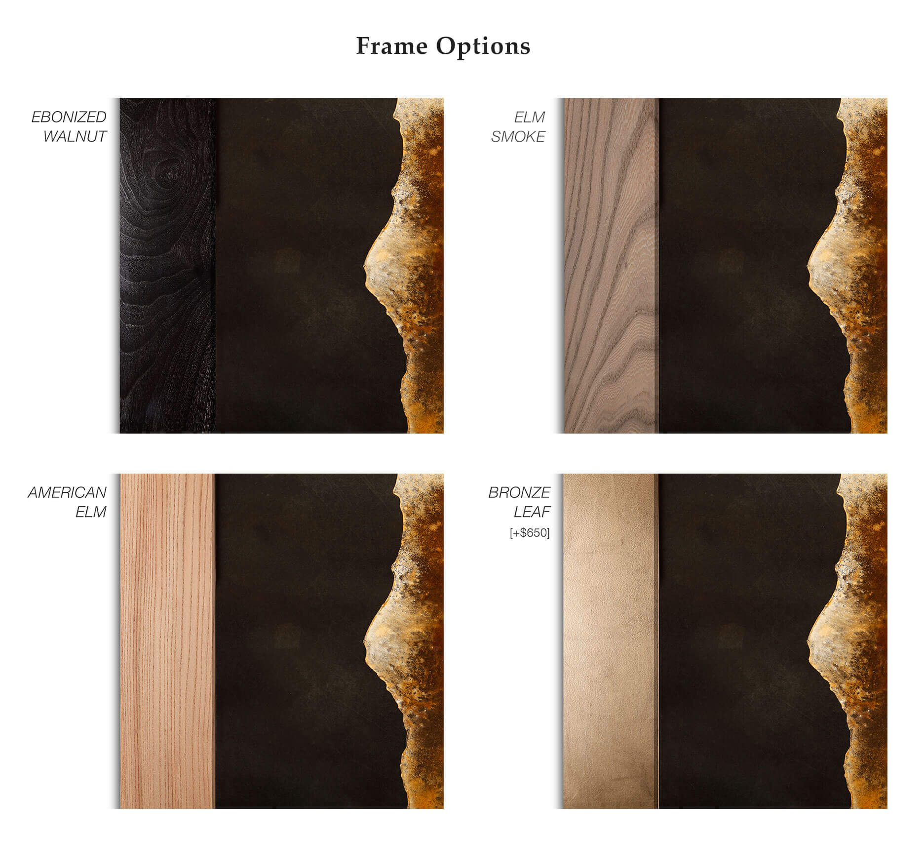 frame-options